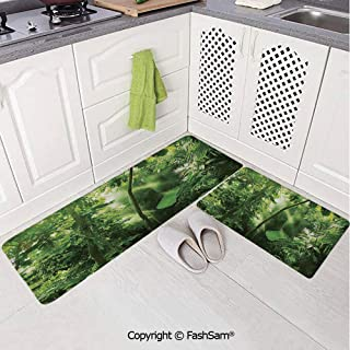 AmaUncle 2 Piece Outdoor Area Rugs Non Slip DoormatSummer Tropical Monsoon Jungle with Bamboos Types of Plants and Large Leaves for Doormat Rugs Living Room W19.6xL31.5 by W19.6xL59