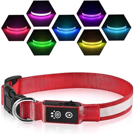 LED Clip f/ür Hundehalsband