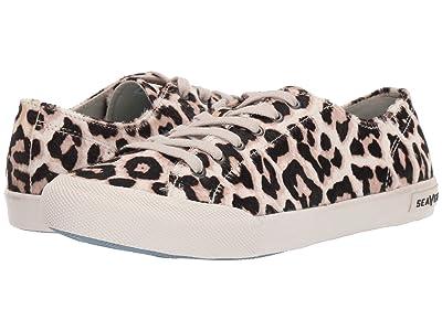 SeaVees Monterey Sneaker Mulholland (Snow Leopard) Women