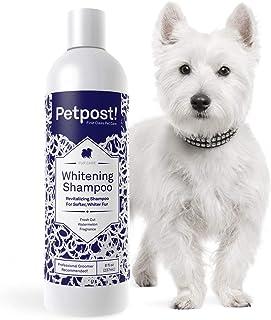 Petpost Dog Whitening Shampoo – Beste Aufhellung Behandlung für Hunde mit weißem Fell – beruhigender Wassermelonen-Duft – Malteser, Shih Tzu, Bichon Frisé genehmigt – 227 ml