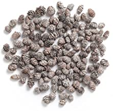 Byher Pine Cones, Mini Pinecones in Bulk for Crafts, 8OZ, Pack of 110 (White)