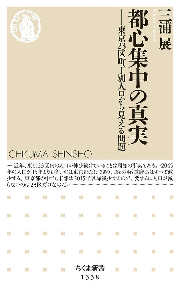 相互交通適応的都心集中の真実 ──東京23区町丁別人口から見える問題 (ちくま新書)