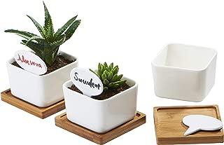 Best pot plant signs Reviews