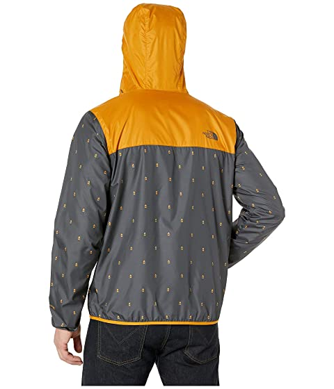 2017b4a8e The North Face Printed Cyclone Hoodie | Zappos.com