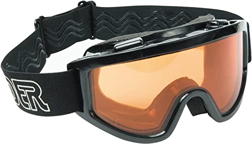 Raider Motorcycle & Snowmobile Dual Lens Goggle (noir, Taille Adult)