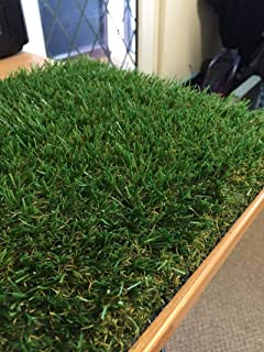 10 Year Guarantee 6ft 6 x 16ft 5 Pet Friendly Fake Grass Fylde Grass Free Delivery Kendal 34mm Artificial Grass Astro Turf for: Lawns Decking Paving etc 2m /& 4m Widths 2m x 5m -