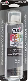 Tulip ColorShot Instant Fabric Color 3oz. Gray