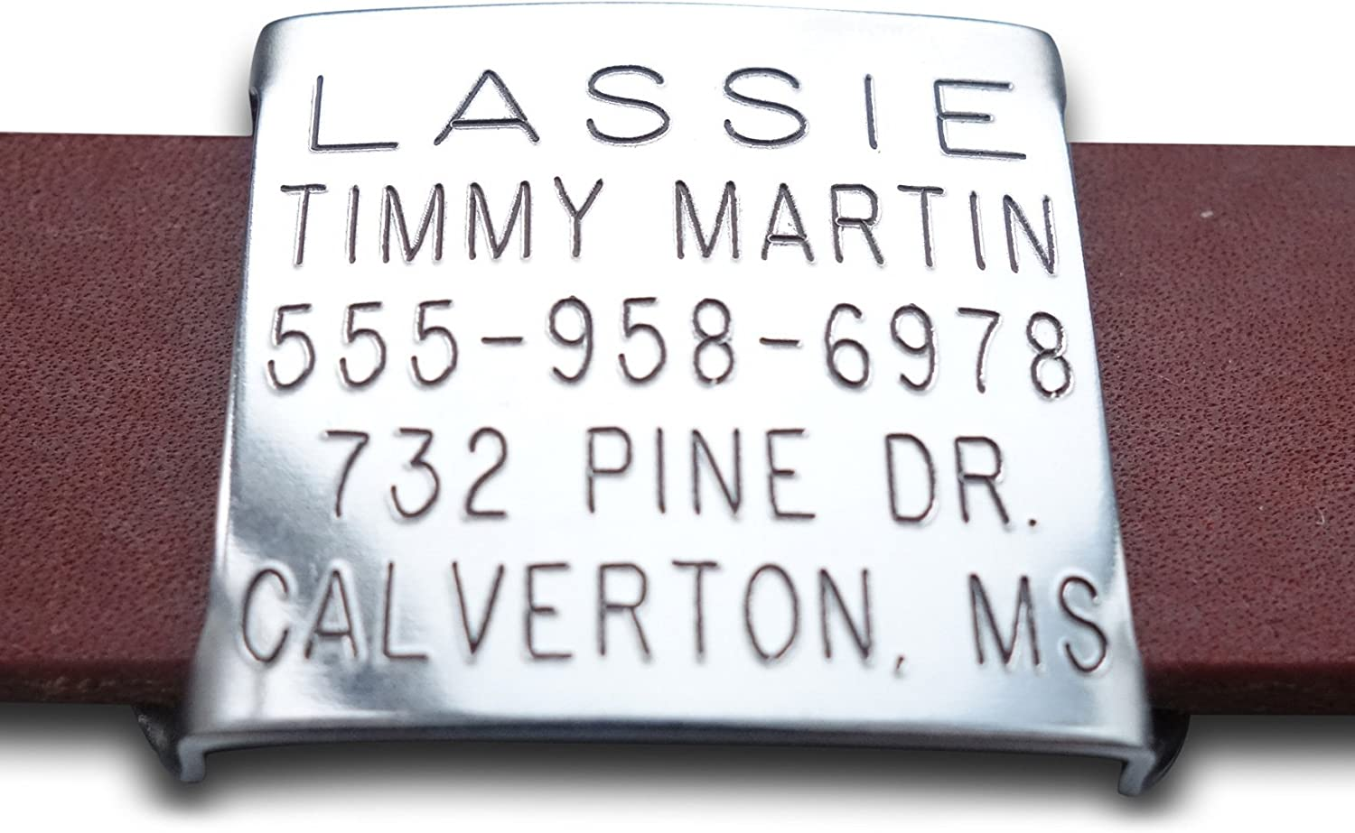 Leashboss Slide On Pet ID Direct sale of manufacturer Tag Louisville-Jefferson County Mall Nylon for Leather and Double Thick