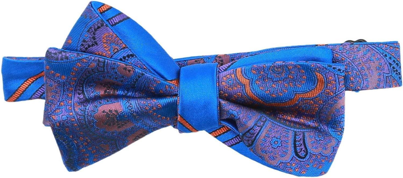 Edward Armah Men's Silk Double Sided Paisley Stripes Hook Bow Tie