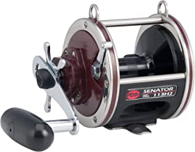Penn Special Senator Star Drag Conventional Fishing Reel