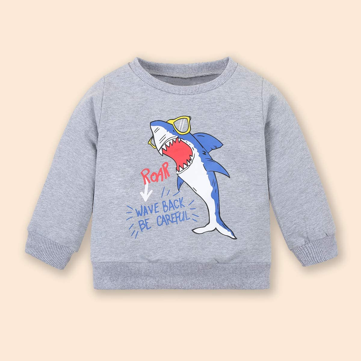 Toddler Boy Clothes Infant Baby Boy Sweatshirt Outfits Tops Pants Set 1-6T
