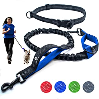 Chunky Paw Hands Free Dog Leash for Running, Walking, Hiking, Jogging,Training for Medium and Large Dogs up to 150 lbs, Durable Dual Handle Waist Leash with Reflective Bungee and Adjustable Waist Belt