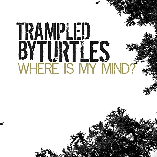 Trampled by Turtles: Where is My Mind