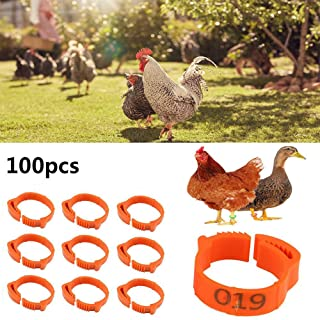 Womdee 100PCS Numbered Plastic Poultry Chickens Ducks Goose Leg Bands Leg Rings, Reusable Poultry Leg Bands ID Identification Tags, Number Mark from 1~100 & Fit for 1 KG ~ 5 KG Poultry