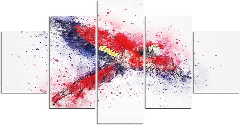 online shopping ARNLRDYA Wall Decor Bird Animals Low price Wa Abstract Parrot Framed Macaw