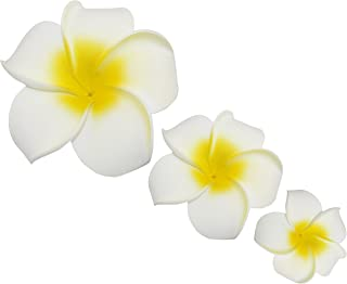 LD DRESS Plumeria Hawaiian Foam Frangipani Flower for Wedding Party Decoration Package