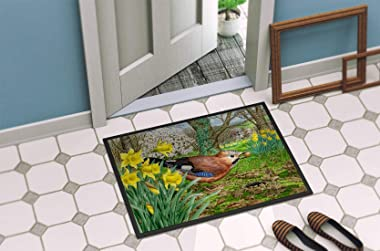"Caroline's Treasures ASA2176MAT Jay Indoor or Outdoor Mat, 18"" x 27"", Multicolor"
