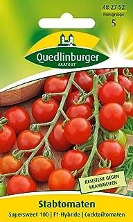Stabtomate, Supersweet 100 F1 Quedlinburger Saatgut Samen 482752