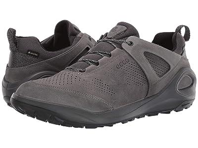ECCO Sport BIOM 2GO Sneaker (Titanium/Titanium) Men