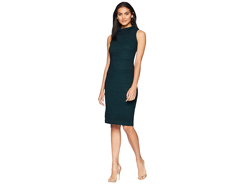Adrianna Papell Cable Knit Lace Sheath (Forest) Women