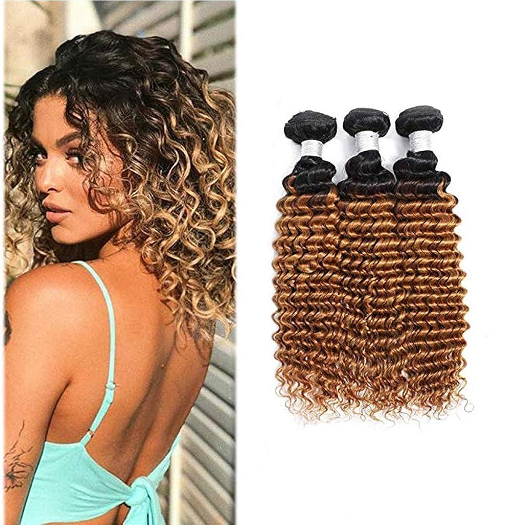 ポーチ受賞醜い女性の髪織りブラジルの巻き毛の束オンブル巻き毛の束人間の髪の毛の束深い巻き毛(3束)