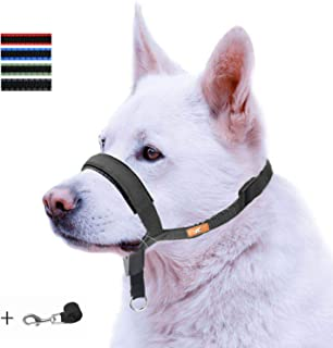 wintchuk Dog Head Collar with Padded Leather, Head Harness Stops Dog Pulling, Head Leash