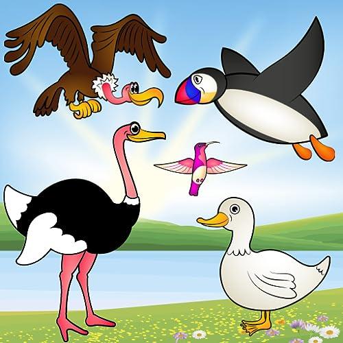 Vögel Spiel für Kleinkinder : Puzzlespiel mit Vogelarten ! Pädagogische Puzzle Spiele - kostenlose App