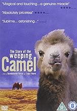 Weeping Camel