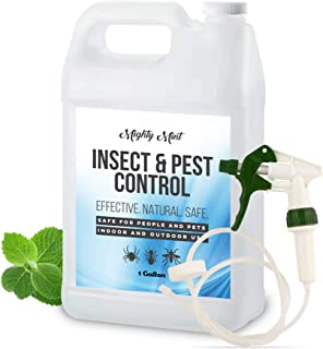 Best all insect killer spray Reviews