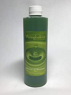 Live Marine Phytoplankton - 8oz Bottle