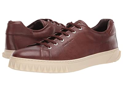 Salvatore Ferragamo Cube Sneaker (New Brown) Men