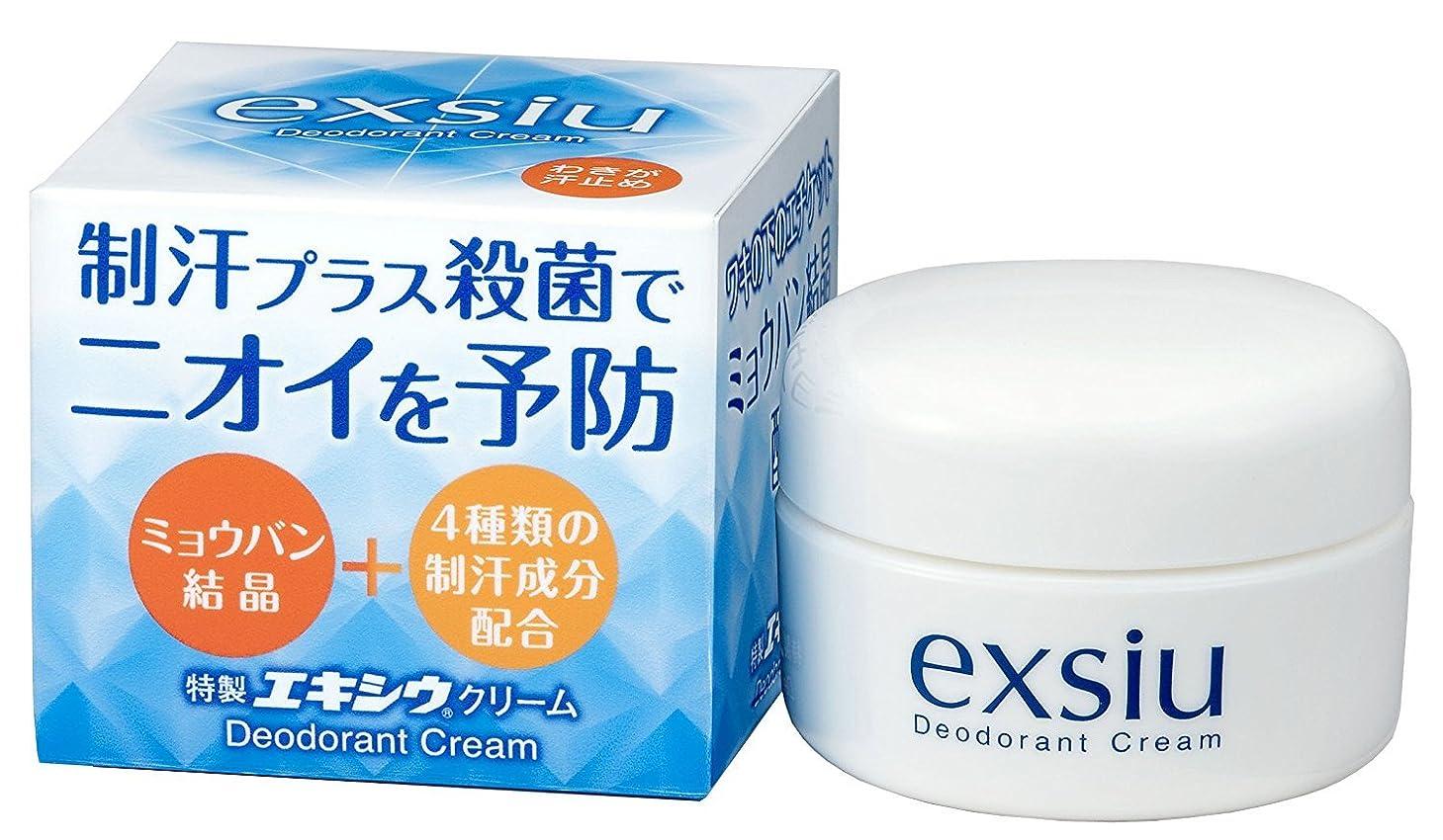 移動する見捨てる難民東京甲子社 特製エキシウクリーム 30g