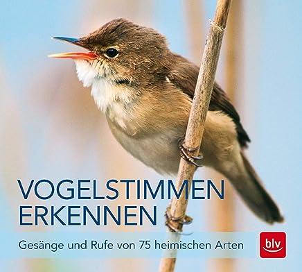 Vogelstien erkennen CD Gesänge und Rufe von 75 heiischen Arten BLV by Andreas Schulze