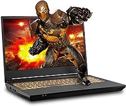 Sager NP7958F1 15.6-Inch FHD 144Hz, 72% NTSC Gaming Laptop, AMD Ryzen 9 3900, RTX 2070 8GB, 32GB 3200 RAM, 1TB NVMe SSD + ...