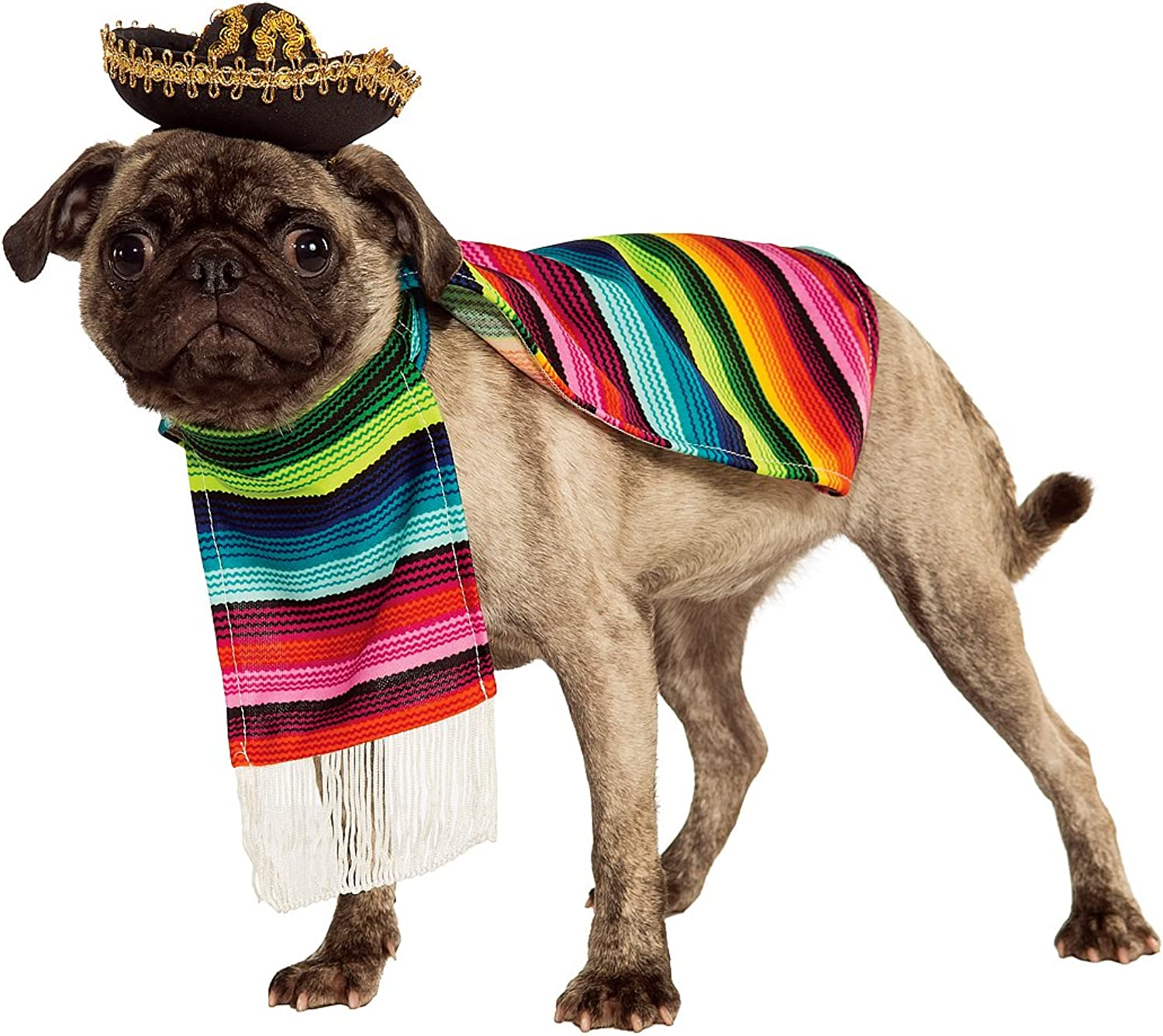 Mexican Sarape Pet Costume  Large