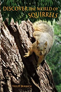 Discover the World of Squirrels: Illustrated Kids Book with Fun Facts about Squirrels and Builds Kids Vocabulary
