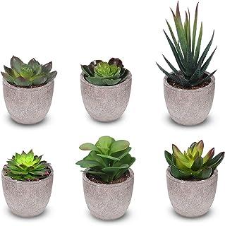 HAUSPROFI Lot de 6 Plante Artificielle en Pot Intérieur Extérieur Succulentes Terrarium Plantes Grasses pour Maison/Balco...