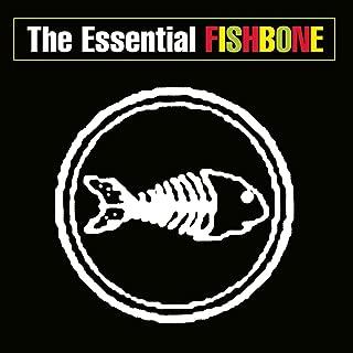 Best fishbone when problems arise Reviews