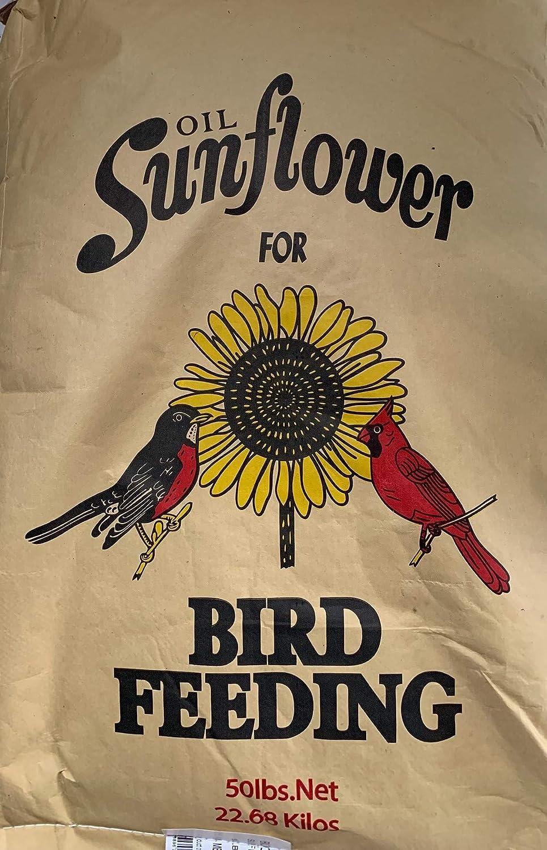 Black Oil Sunflower Popular Ranking TOP18 brand Seed 40lb.