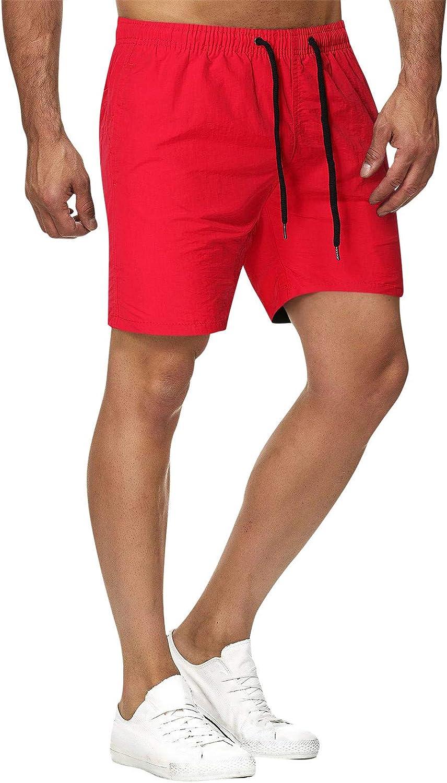 ZCAITIANYA Men's Shorts Summer Casual Beach Pants Sports Pants Breathable Slim Fit Jogging Running Fitness Pants Pockets