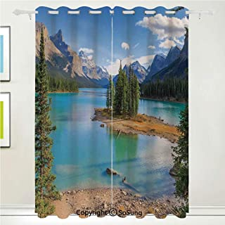 roll up bamboo blinds outdoor canada