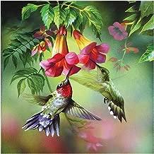 GLymg 5D DIY Diamond Painting Kit Hummingbird Rhinestones Embroidery Square Drill Mosaic Picture Home Decor (12X12 inch)