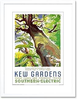 9x7 '' Travel KEW Gardens Southern Electric Tree Bird Framed Art Print F97X1813