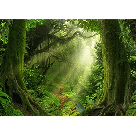 Tropical Plants Background 3x5ft Green Leaf Wall Polyester Photography Backdrop Nature Scenery Evergreen Jungle Tree Park Garden Wedding Birthday Personal Portrait Shoot Photo Prop Wallpaper