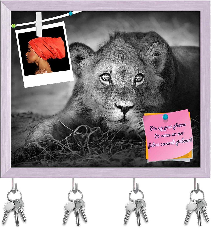Artzfolio Lion Panthera Leo Key Holder Hooks   Notice Pin Board   White Frame 19.1 X 16Inch
