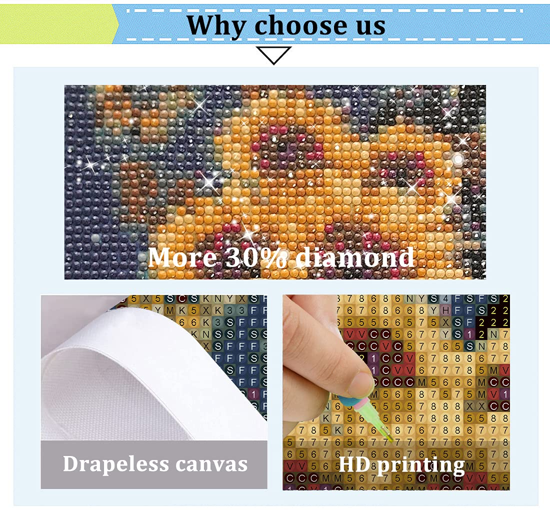 Diamond Painting Kits for Adults, Sunflowers and Lady Inspired by The Quote I am The Storm DIY Diamond Art Home Wall Decor Room Diamond Dotz 14 x 14