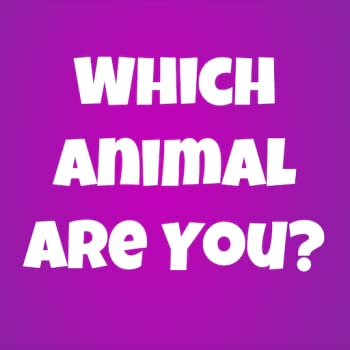 Which Animal Are You?
