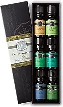 P&J Trading Nature Set of 6 Premium Grade Fragrance Oils - Forest Pine, Ocean Breeze, Rain, Fresh Cut Grass, Sandalwood, Bamboo - 10ml