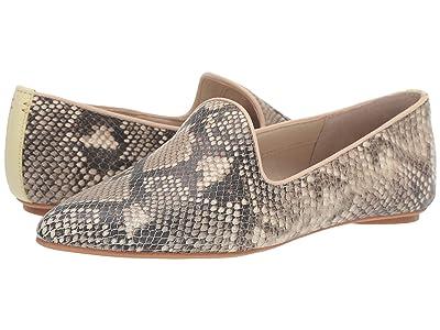 Dolce Vita Gail (Black/White Snake Print Leather) Women