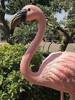 Animali Di Plastica Da Giardino.Amazon It Fenicottero Rosa Giardino E Giardinaggio